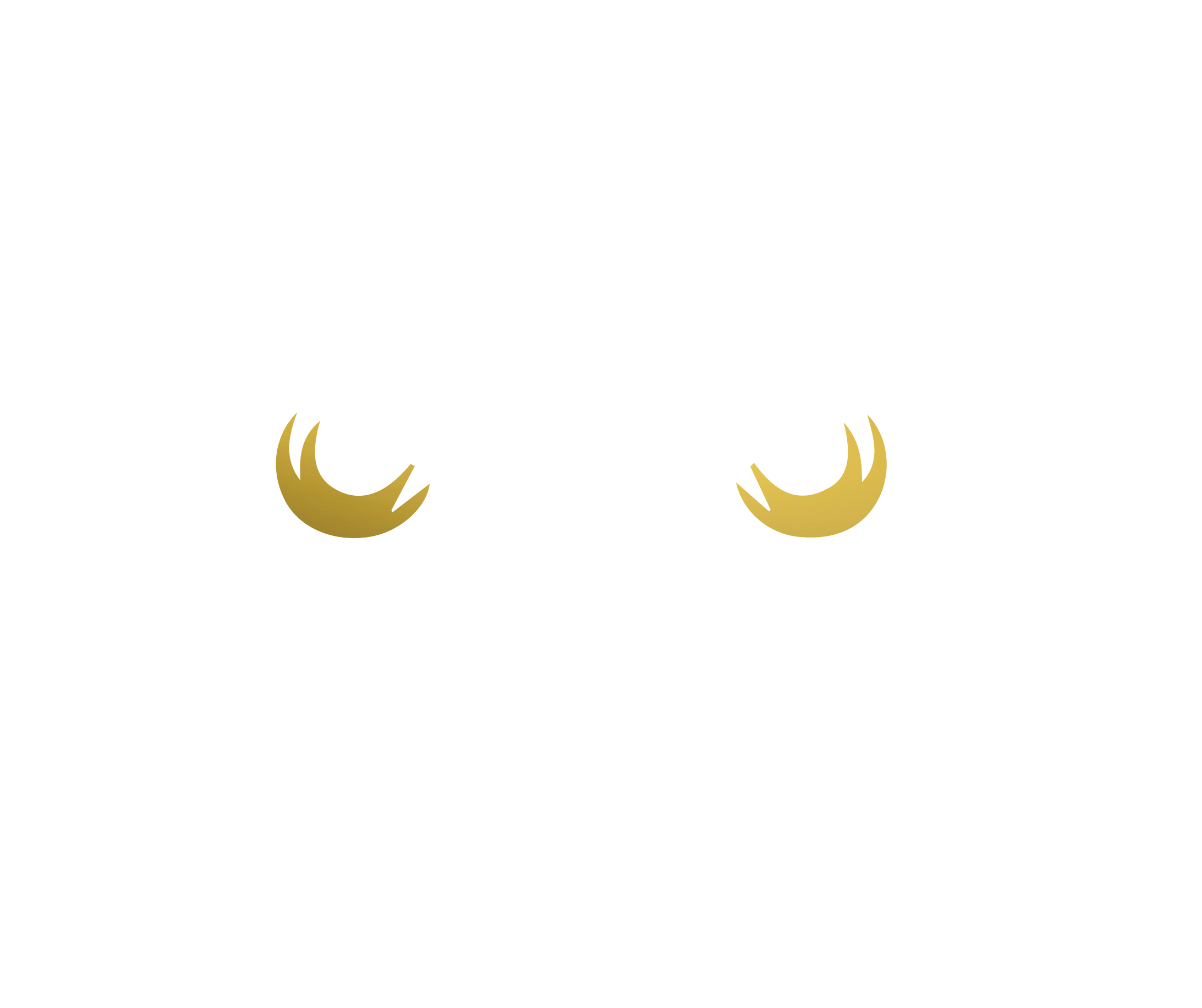 theowl_OWLonly_white.png