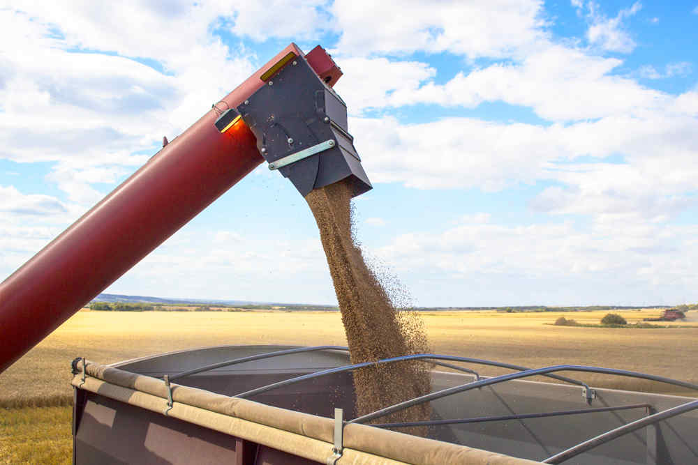 Protect Your Grain Deliveries