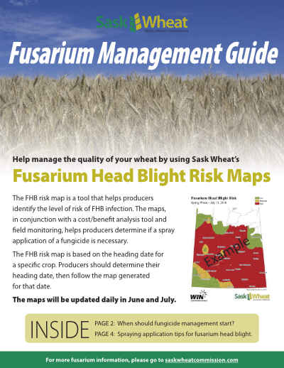 Sask Wheat Fusarium Management Guide (PDF, 2MB) - Use the Sask Wheat Fusarium Management Guide to help manage the fusarium risk in your crops. Click on the image or title to open the guide.