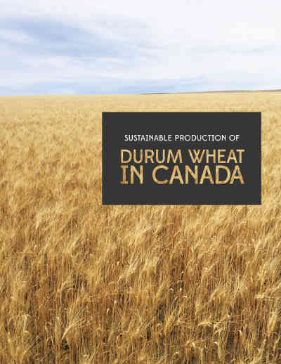Durum Production Manual (PDF) - Click the image or title to download the Durum Production Manual.