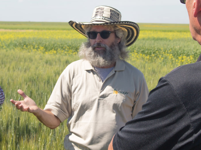 Dr. Randy Kutcher takes Sask Wheat directors and staff on a tour of the Crop Development Centre test plots in July 2016