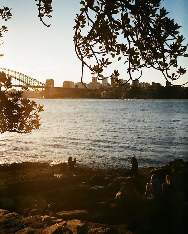 Just got my last film roll from Aus! This photo I took on a solo trip to Sydney. I'm usually really good at being alone but on that trip I felt extremely lonely. Do you think beautiful scenery make people feel more lonely? (Also uploading rest of the roll on @filmbyrien)
