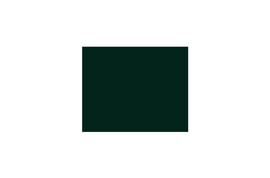 So-Watt_Client-Logos_0014_PE-Nation.png