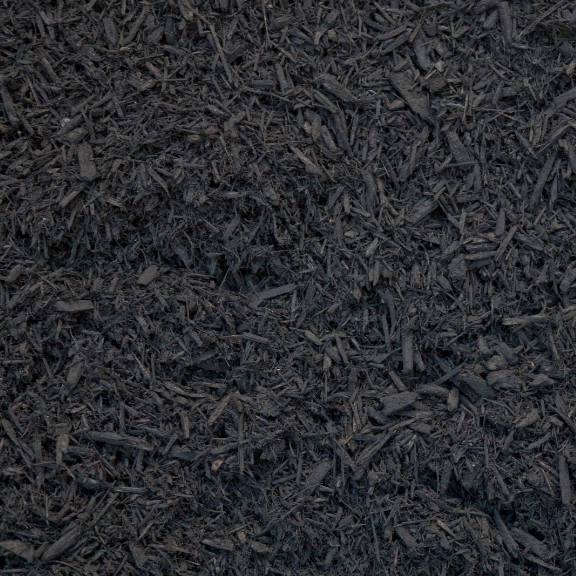 black dyed mulch.jpg