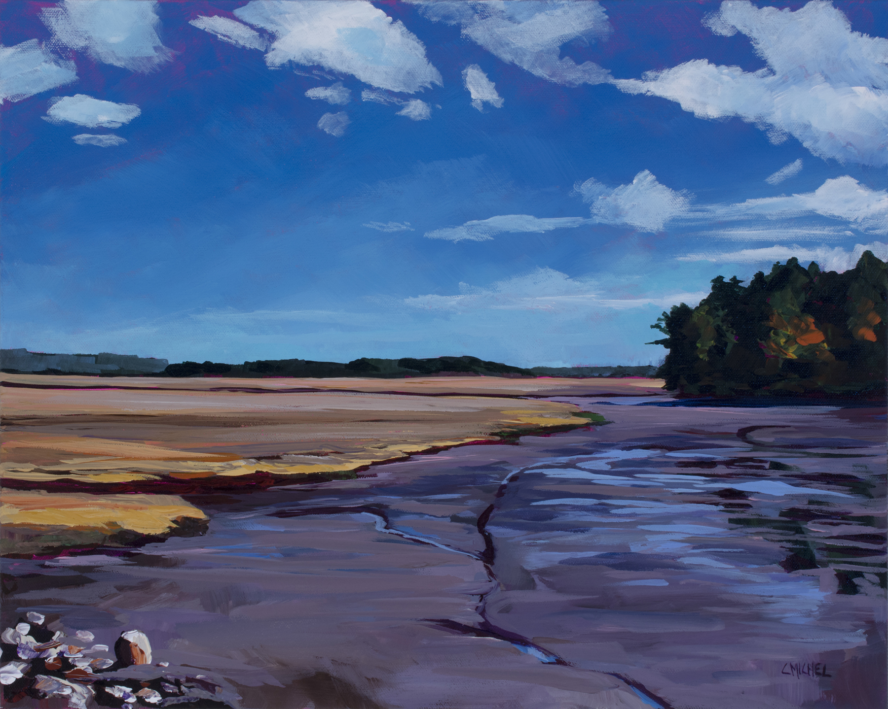 Scarborough Marsh 89-.jpg