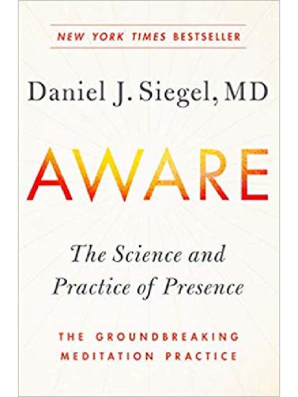 Aware , Dr. Dan Siegel