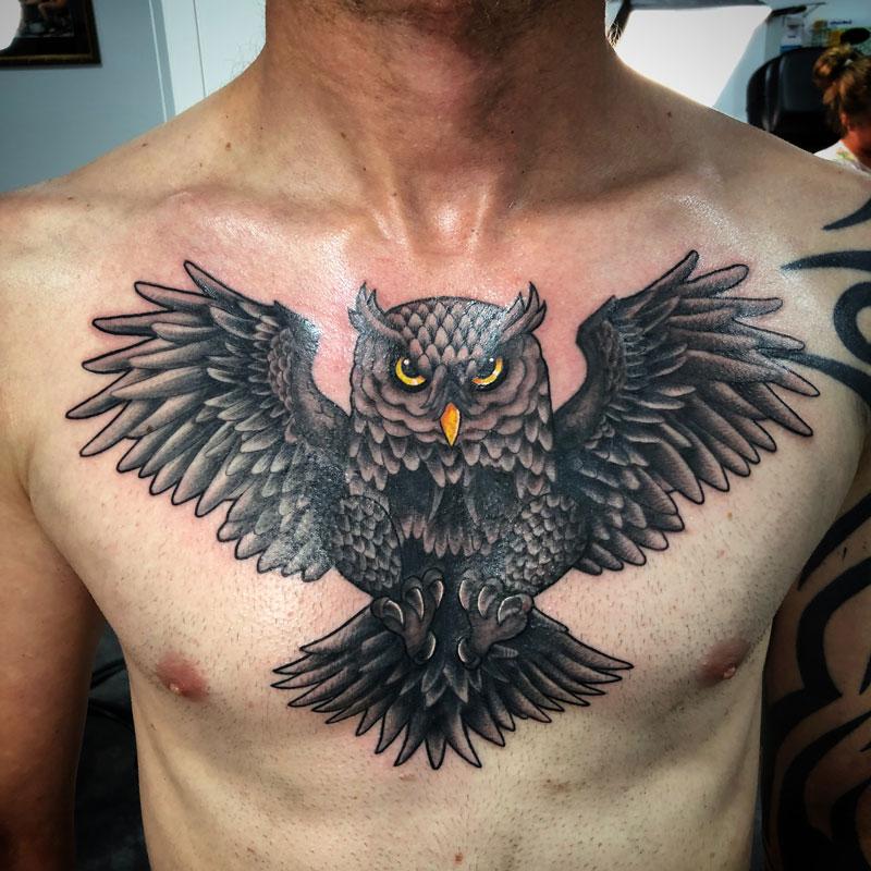 G10-owl.jpg