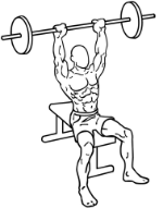 378px-Seated-military-shoulder-press-1.png