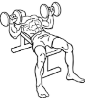 344px-Dumbbell-bench-press-2.png
