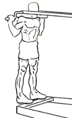 Standing-calf-raises-1 - Edited (1).png
