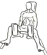 Thigh-adductor-1 - Edited.png