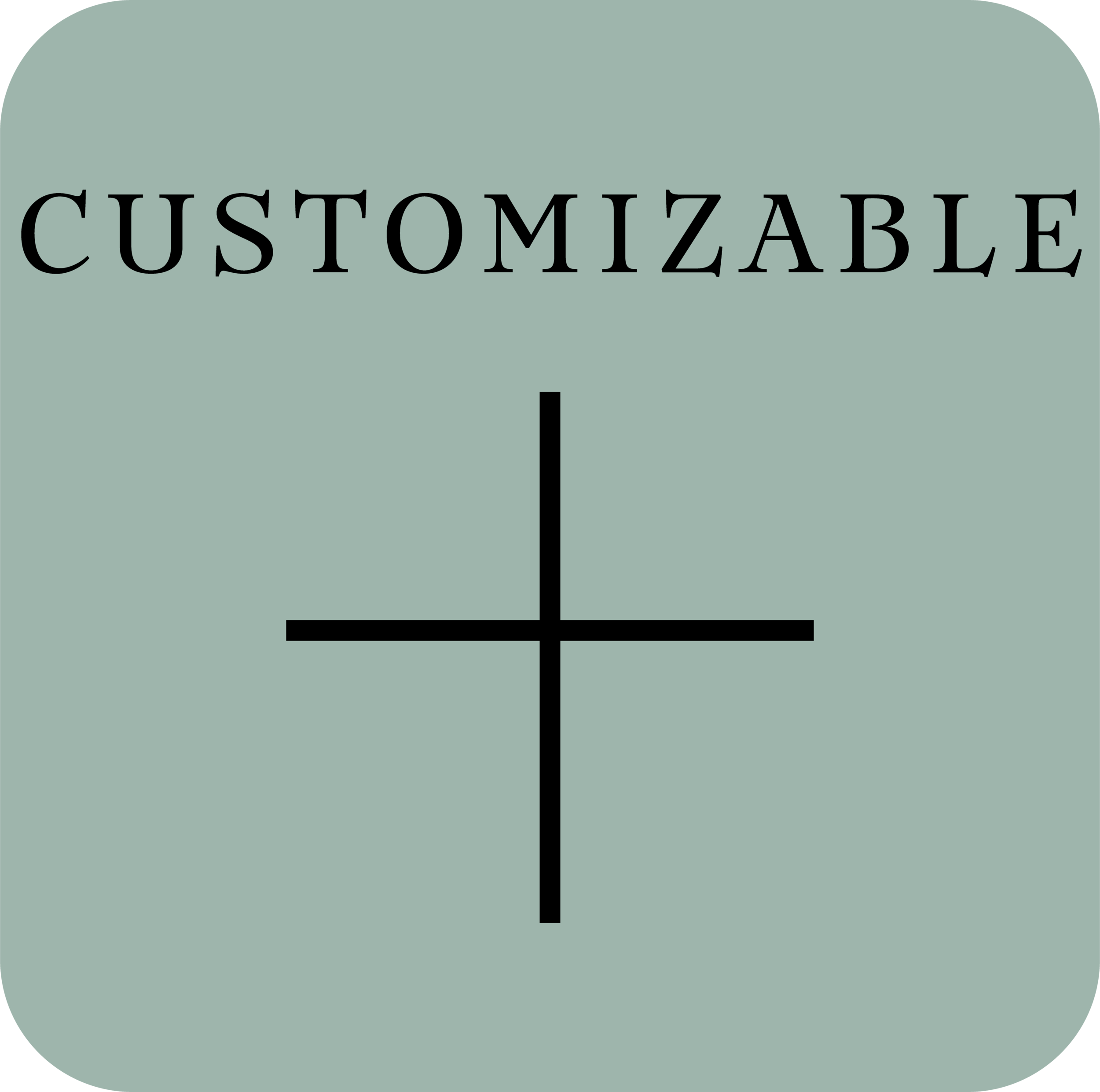 customizable.png