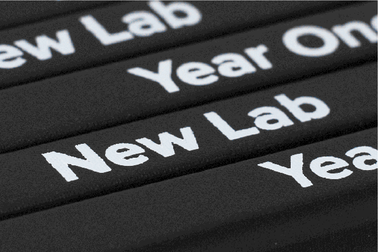 New Lab Brand Book   Branding
