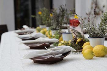 can_amonita_dining_table