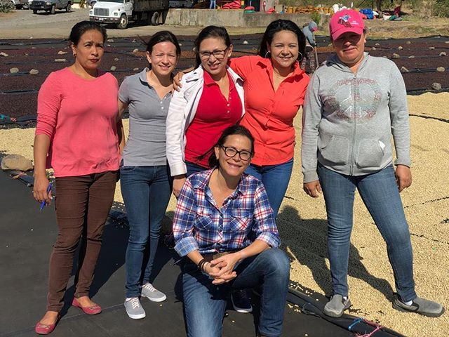 Meet Eleane Mierisch and her incredible team at drying mill Beneficio Don Esteban / Fincas Mierisch between Sébaco and Matagalpa in Nicaragua.  From left to right: Maria Macy who runs reception, Maira Avilez who does exportation, Érica Blandino who manages la bodega (the warehouse), Haisell Beteta who is pretty much in charge of everything, Toñita Ruiz who manages the patio, and in center is Eleane Mierisch, Head Mill Manager and Team Leader and Head Cupper and Client Relations (and much more). Their teamwork, respect for each other, organizational skills, careful focus, and quick-to-adapt mentality has had a big impact on how we view professional and personal relationships. Eleane and Haisell are two of our invited speakers for our annual panel event in April in NYC, and we couldn't be more thrilled to hear them share more about their work and their lives. Link to RSVP to the panel event in our bio! #fincasmierisch #fincasmierischvisits