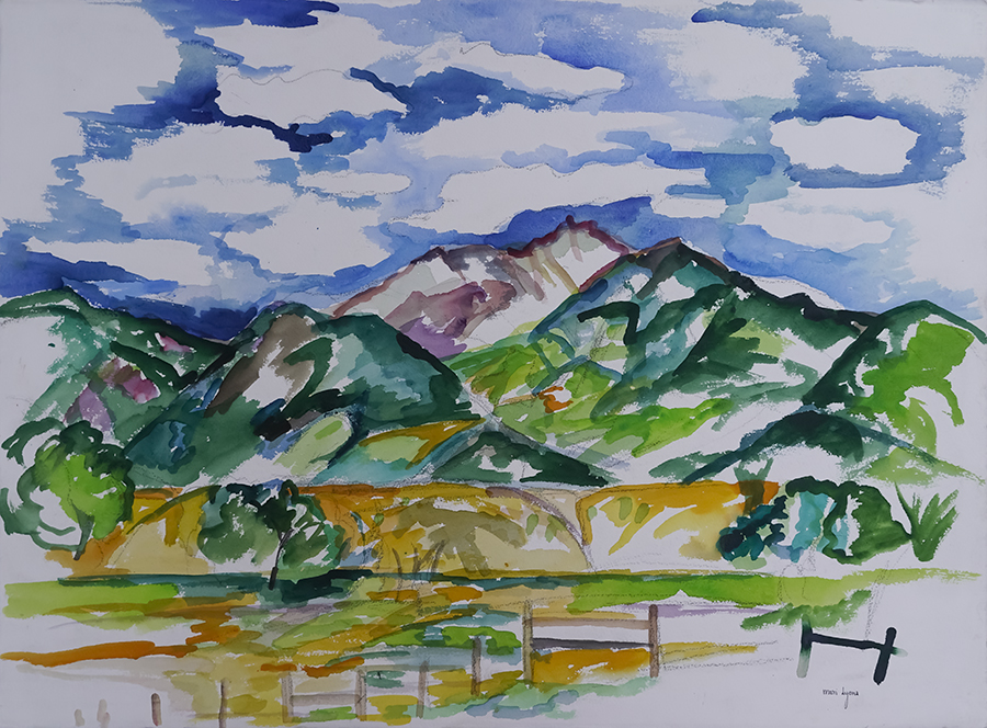 Loose Hills and Split Rail 22.5x30 Watercolor