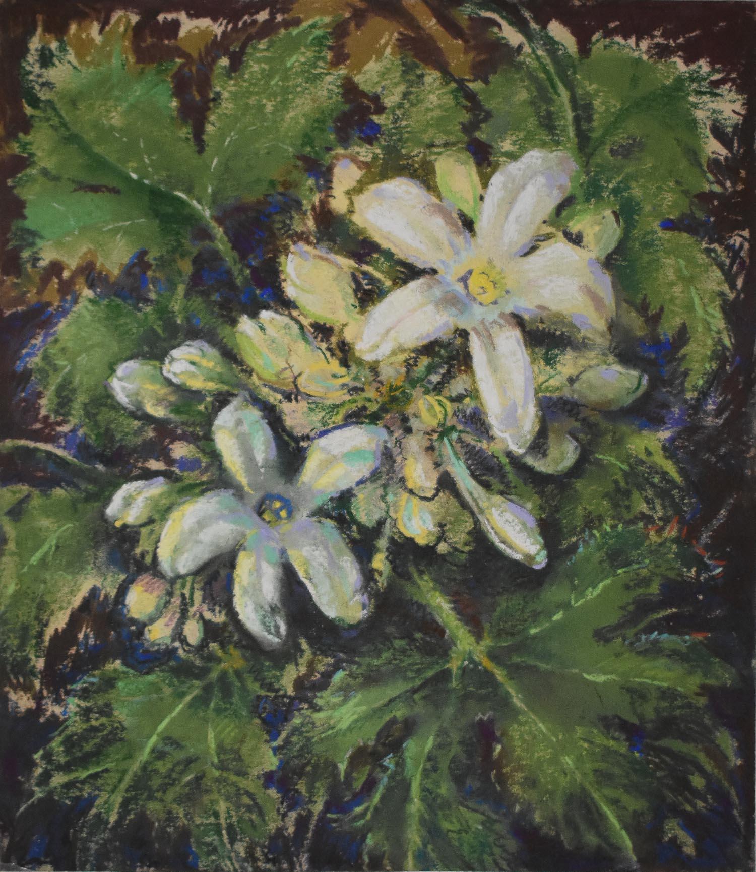 Stevens - Floral.jpg