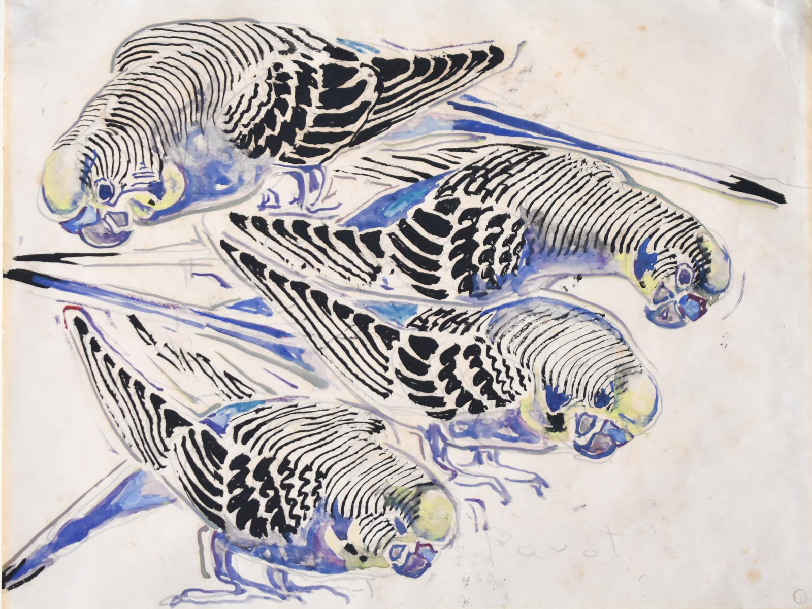 "Walter Inglis Anderson(American, 1903-1965)  Toby,   watercolor and pencil on paper, estate stamped lower right, inscribed ""Parot"" [sic] lower right, inscribed en verso ""Mike's Parakeet Toby,"" 8 1/4 x 11 in."
