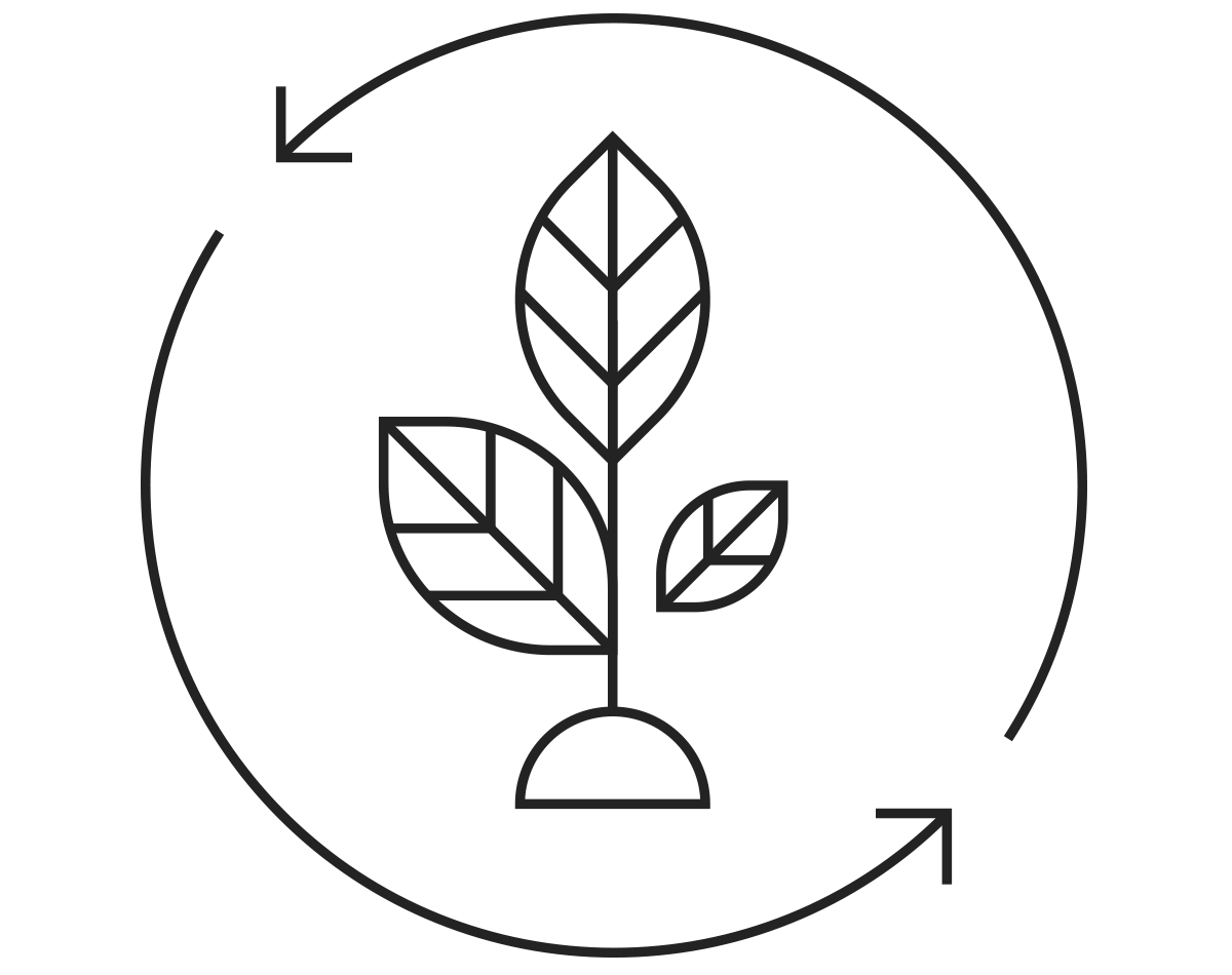 DPC-Website-Service-Icon-4.png