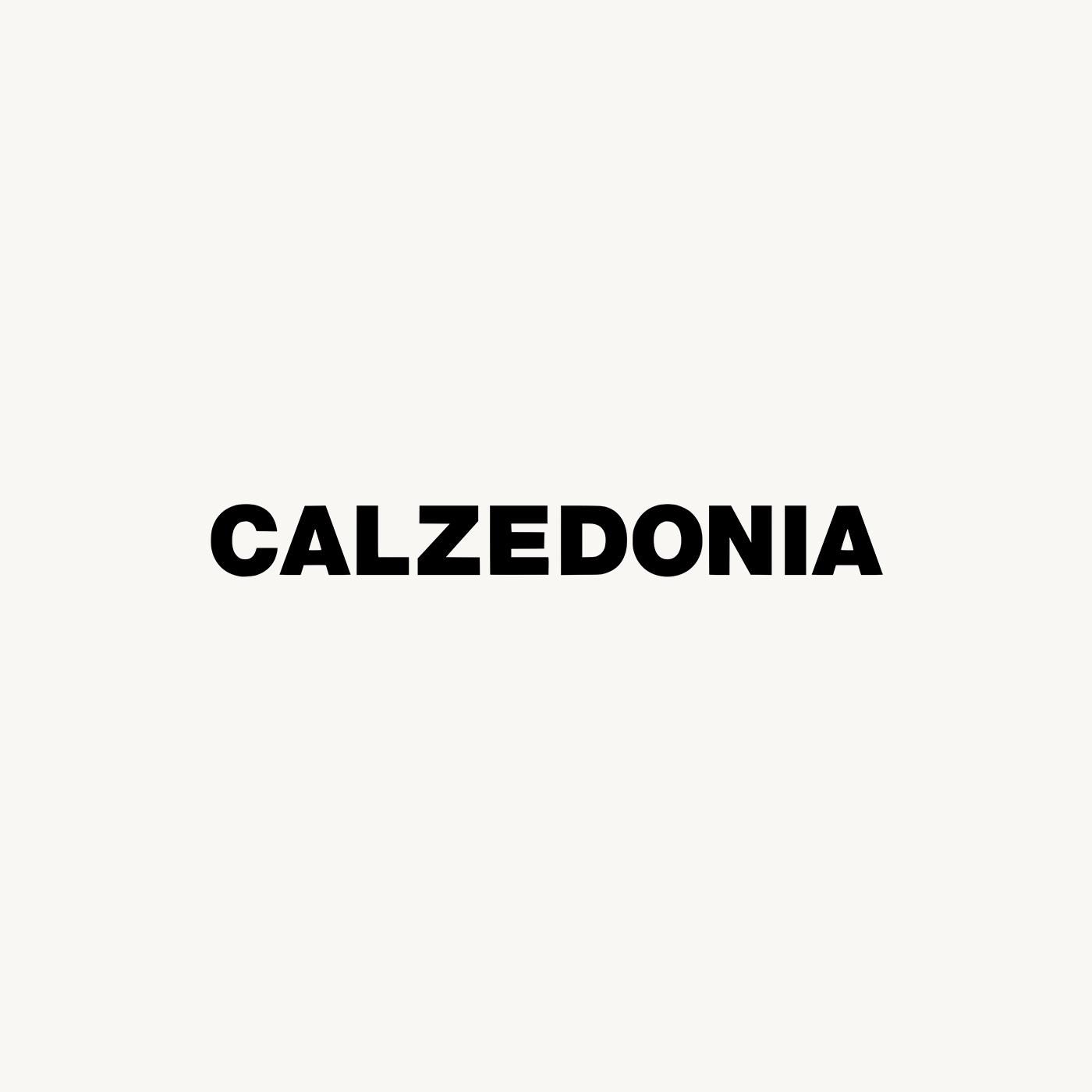 Calzedonia Logo.jpg