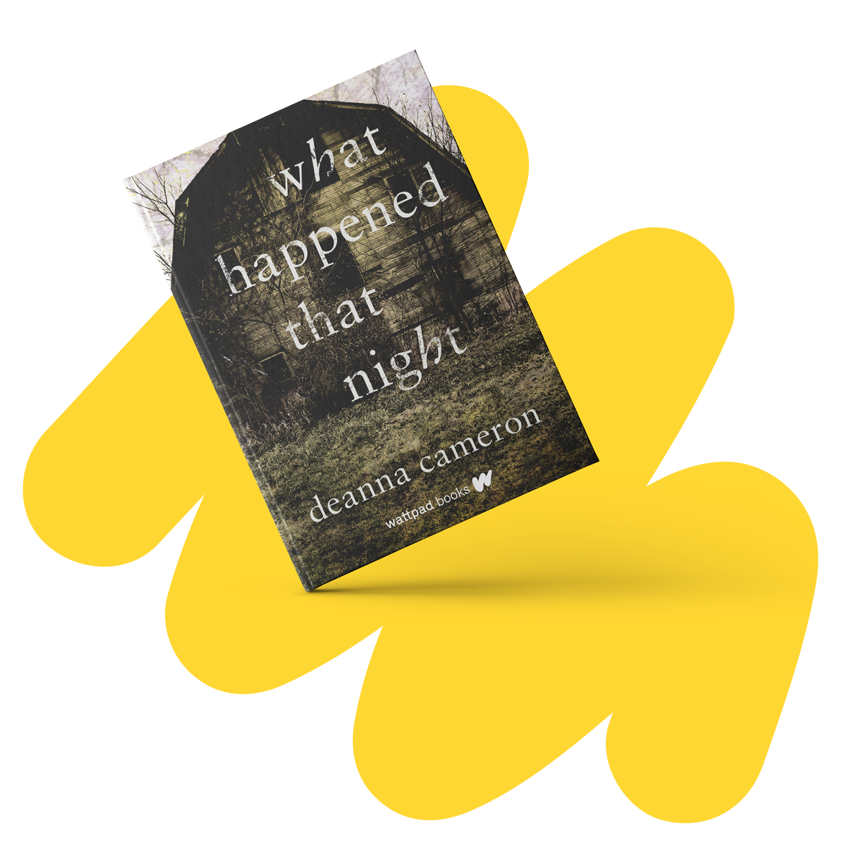 What Happened That Night - Written by Deanna Cameron (@LyssFrom1996)Available September 17, 2019 9780993689918$18.99 / 416 pages / 5.25 x 8.25 Young AdultAvailable for pre-order at Indigo, Amazon, and Barnes and Noble!