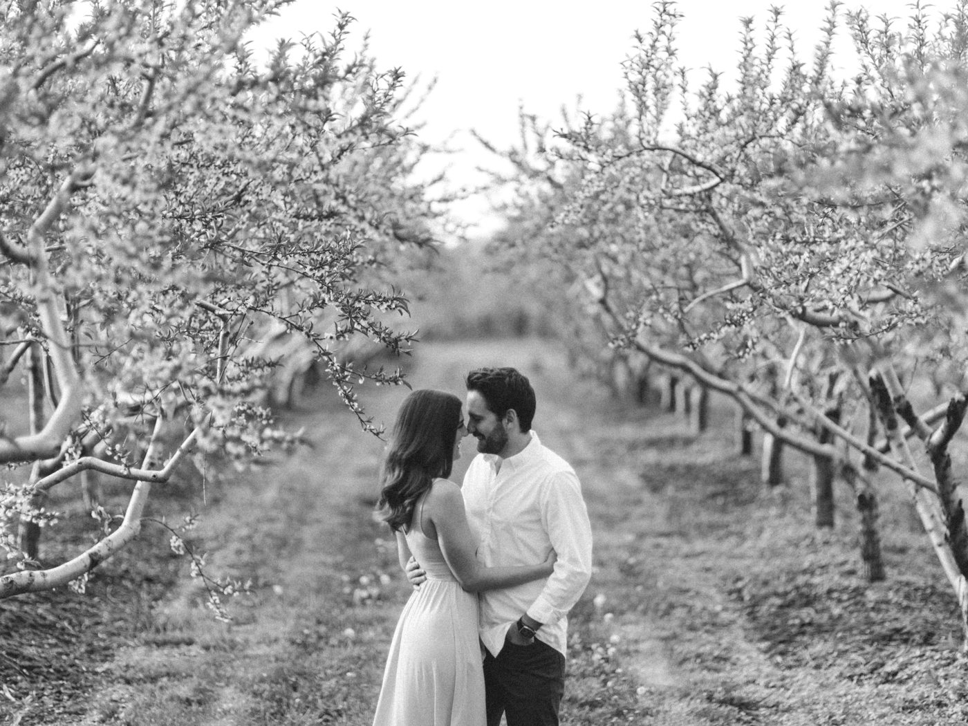 Chris & Heather's Engagement Session in Vineland Ontario Spring Blossoms Trees by Hush Hush Photography & Film Aidan Hennebry - 15.jpg