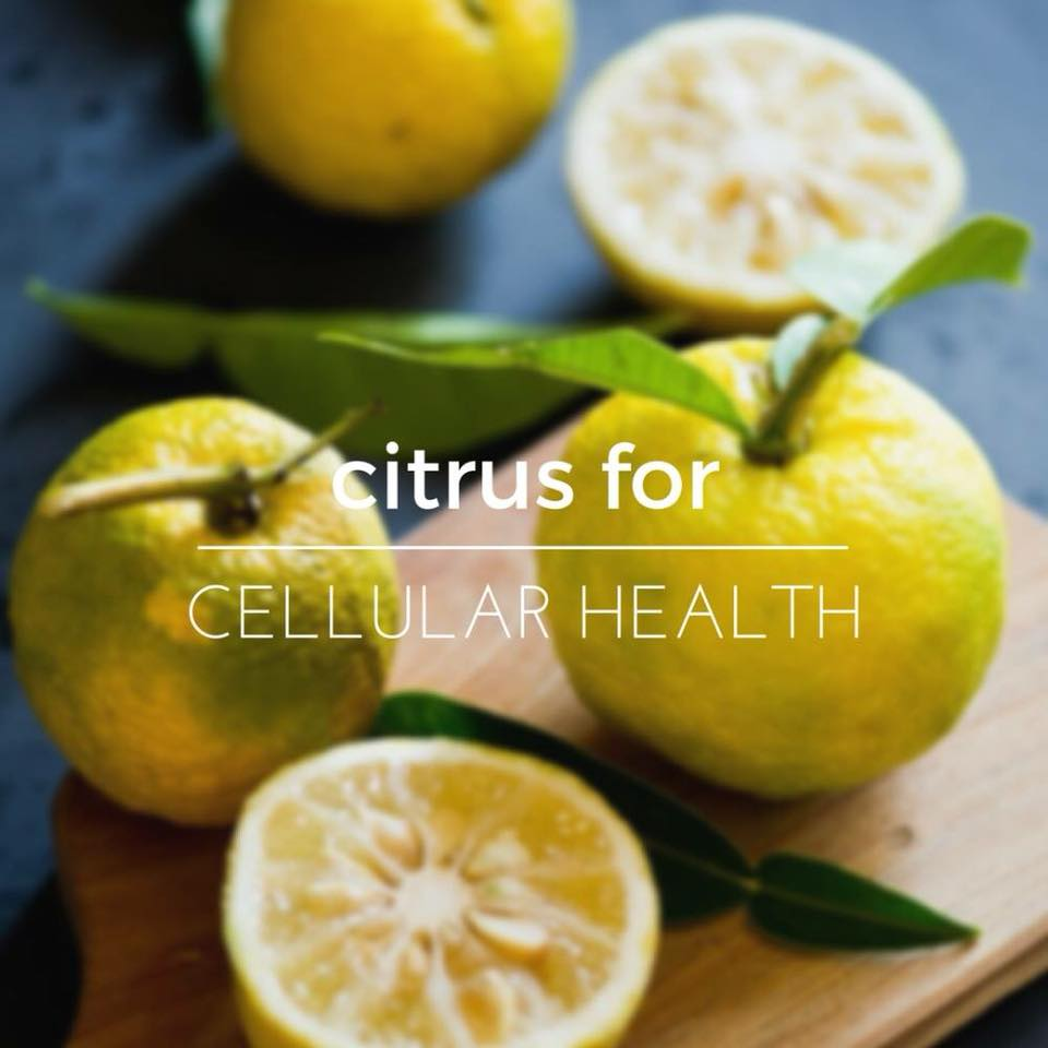 Citrus for Cellular Health
