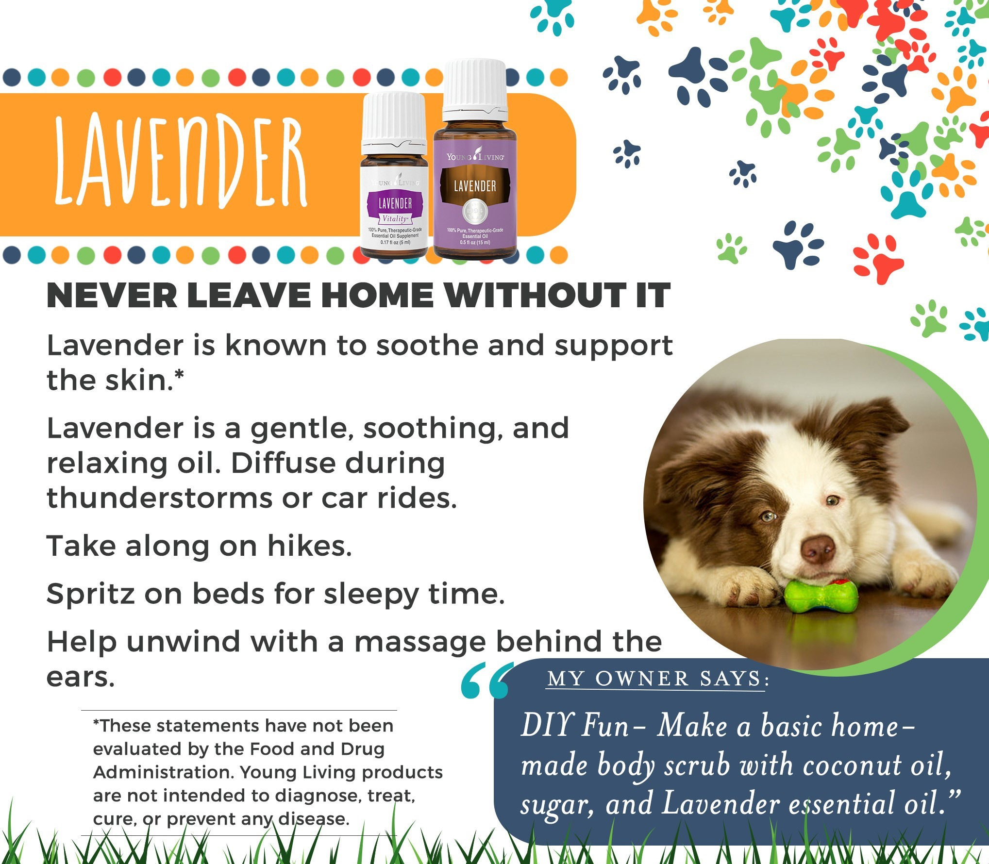 Young Living's Lavender is registered as a NHP by Health Canada.     In Aromatherapy can be used topically:  • to help relieve joint or muscle pain associated with sprains, strains & rheumatoid arthritis  • or inhaled can act as a nervine and calmative which enhances relaxation  • or inhaled to reduce the symptoms of cold & cough  • when experiencing digestive discomfort can act as a carminative and antispasmodic  • to help relieve headache    Try applying topically when needed.