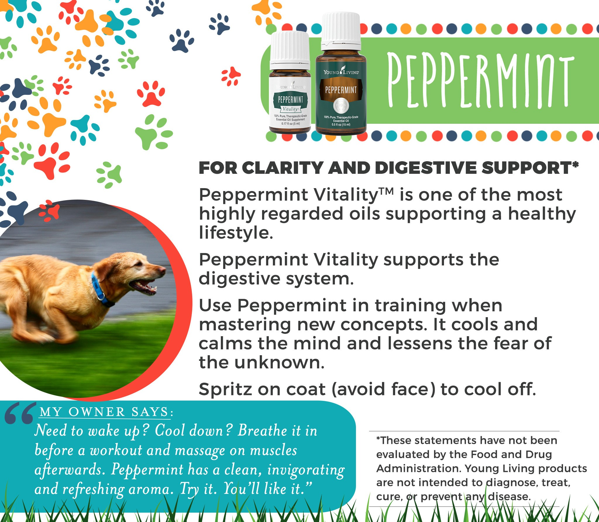 11-Dogs-Peppermint.jpg