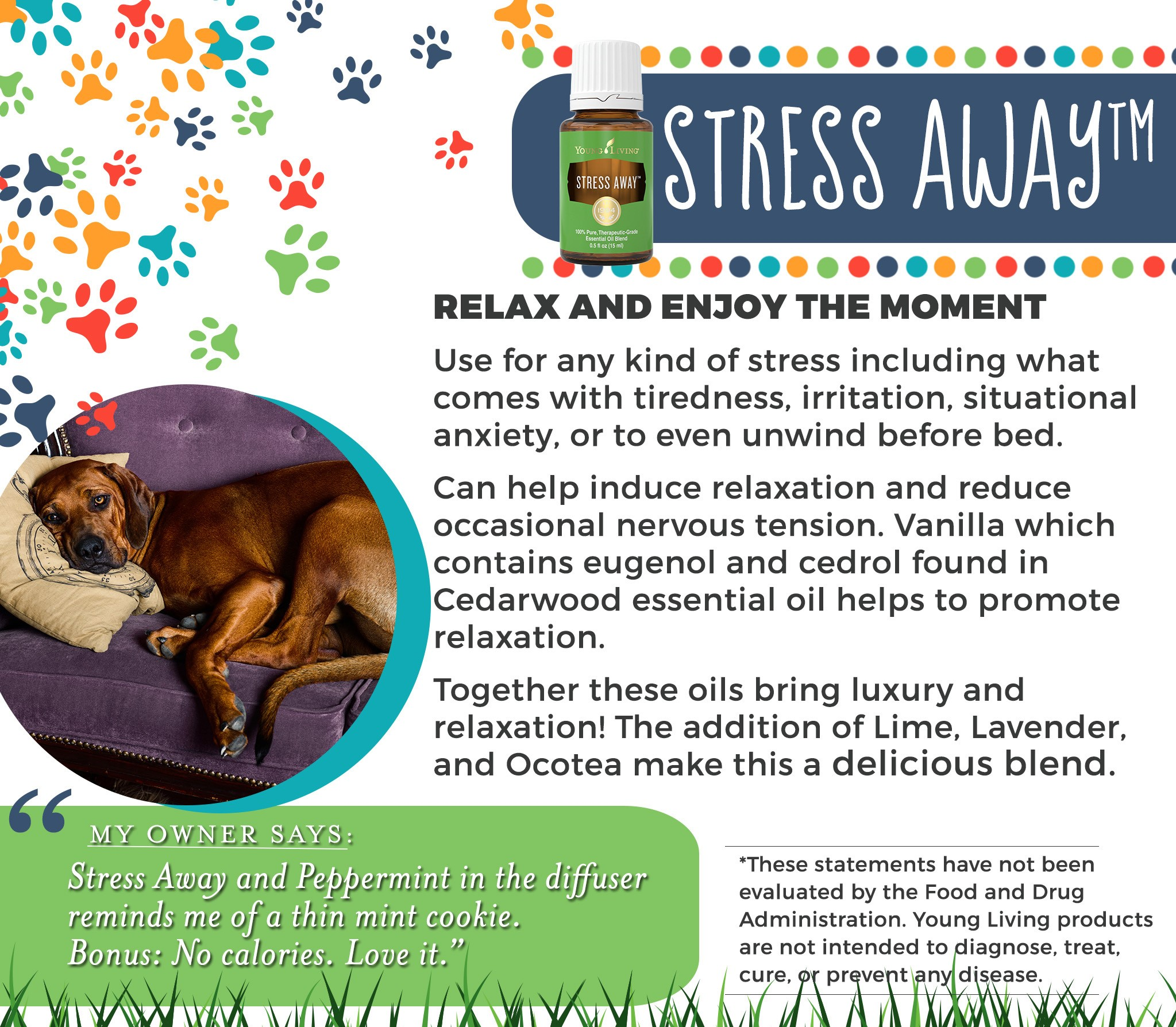 15-Dogs-Stress-Away.jpg
