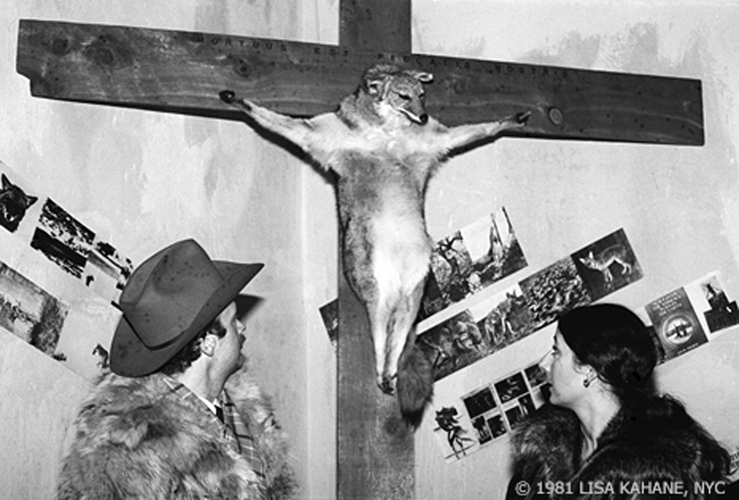 Paulette Nenner,  Crucified Coyote . Nenner's work occasioned public controversy when NYC Parks Commissioner Gordon Davis orded it removed from the Aniamls in Arsenal exhibition in the Central Park Zoo. Photo by Lisa Kahane