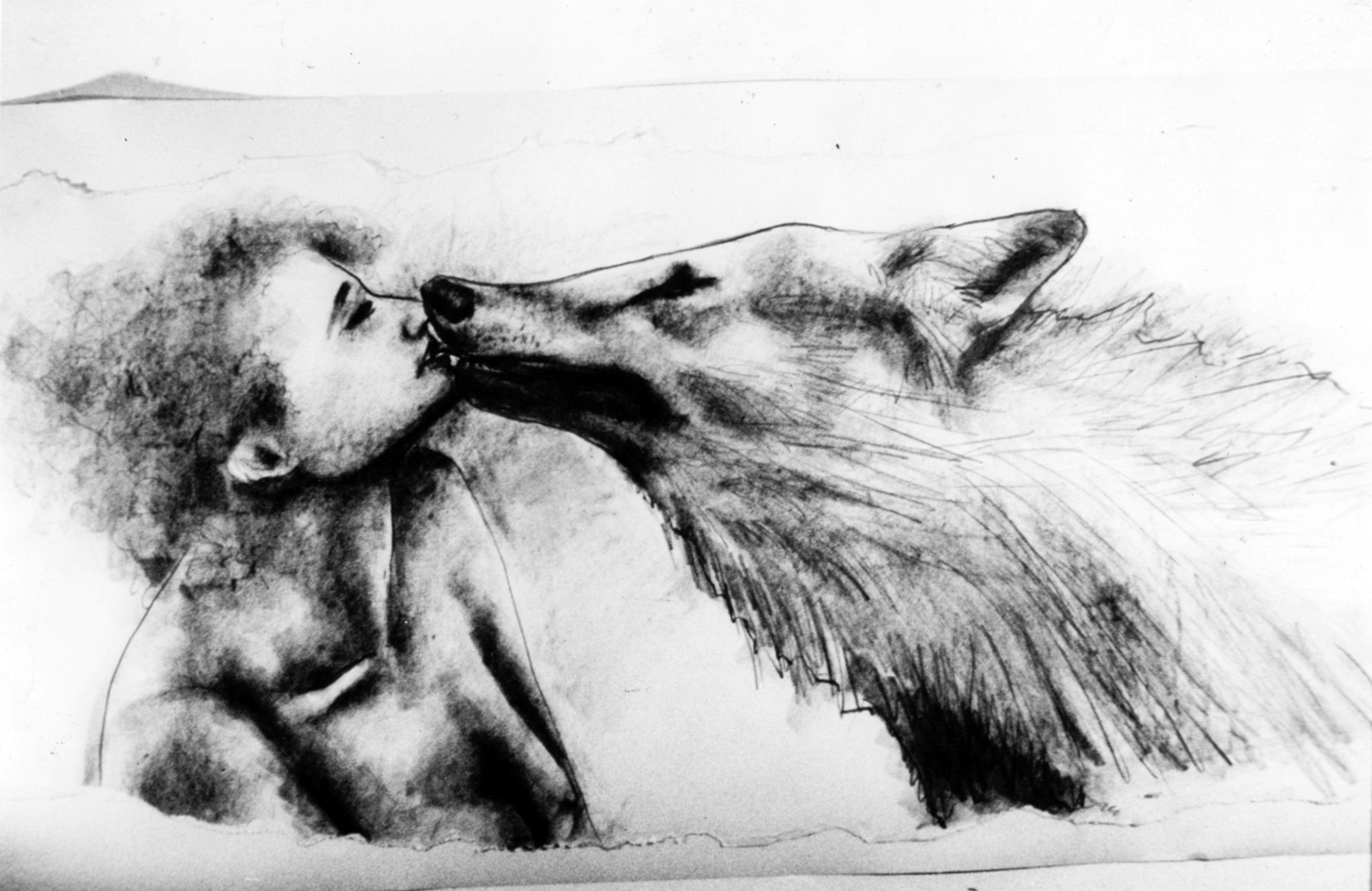 Wolf's Kiss , drawing by Paulette Nenner