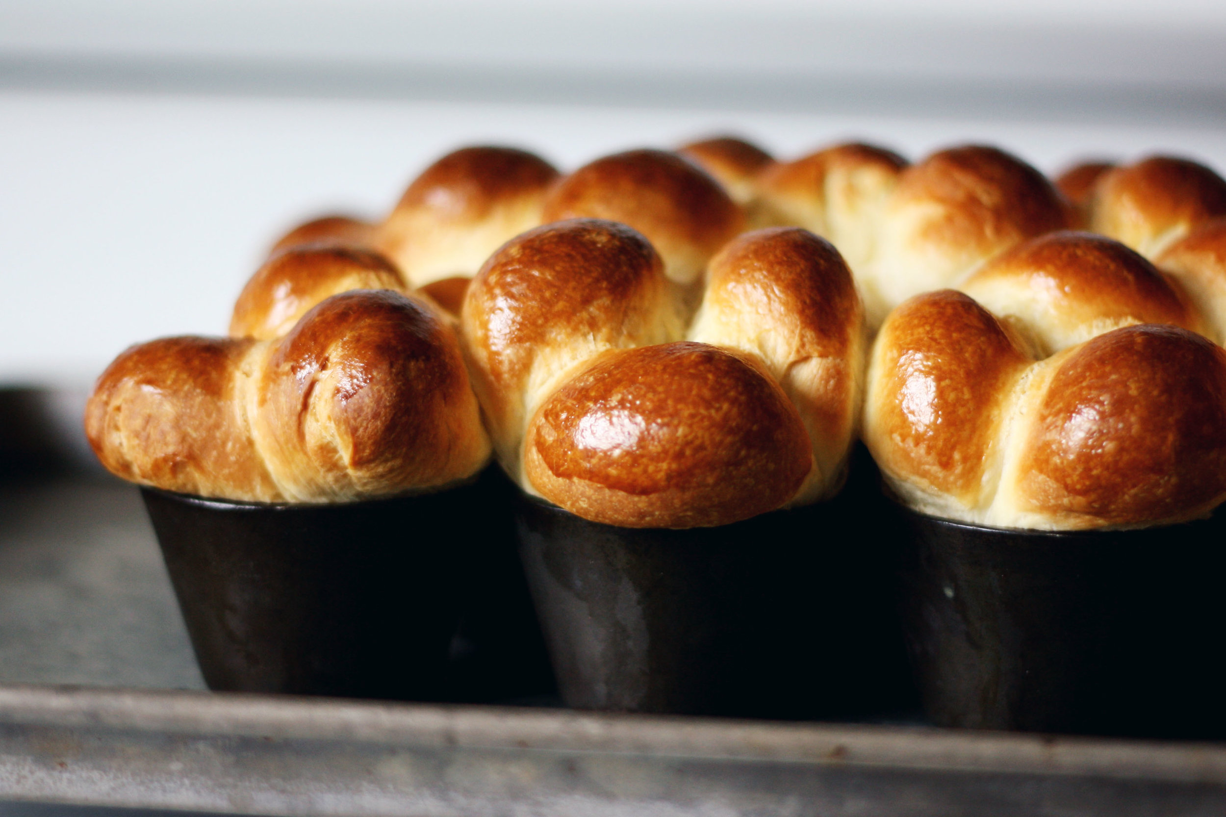 Bubble-Top Brioche | Tara O'Brady