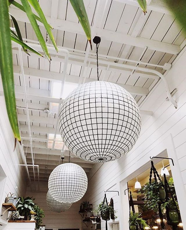 Brb, gotta stop in at the @fernbar.sebastopol to have an afternoon🍹🌿 . 📸 @thebarlow707 . . . #sonomasips #weekend #weekendvibes #interior_and_living #love #sonomacounty #craftandsip #thedaisyclub #saturdayvibes #saturday #saturyay #sipoftheday #yummyinteriors #winelover #cocktail #weekendgetaway #sebastopol #thebarlow