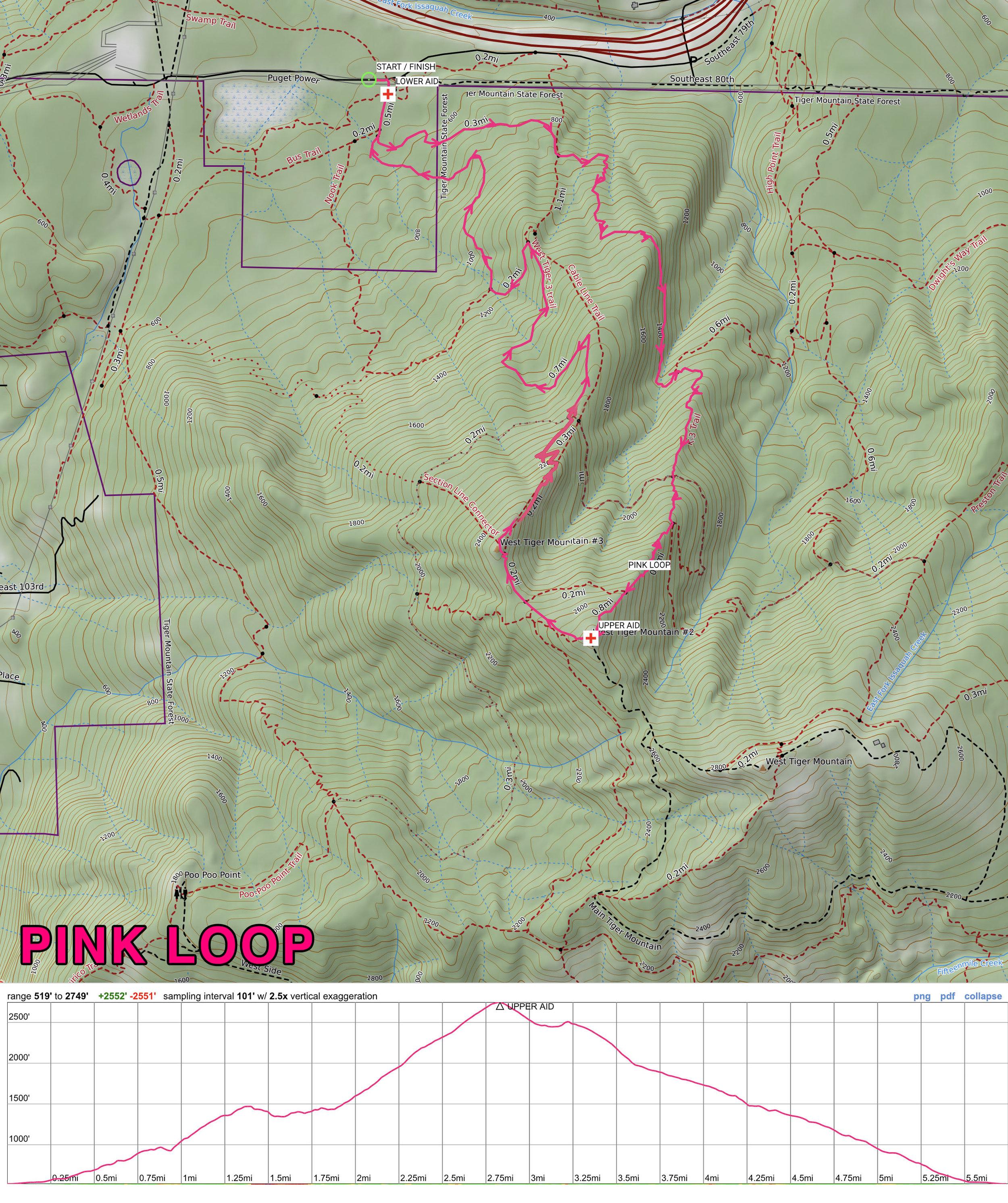 pinkloop.jpg