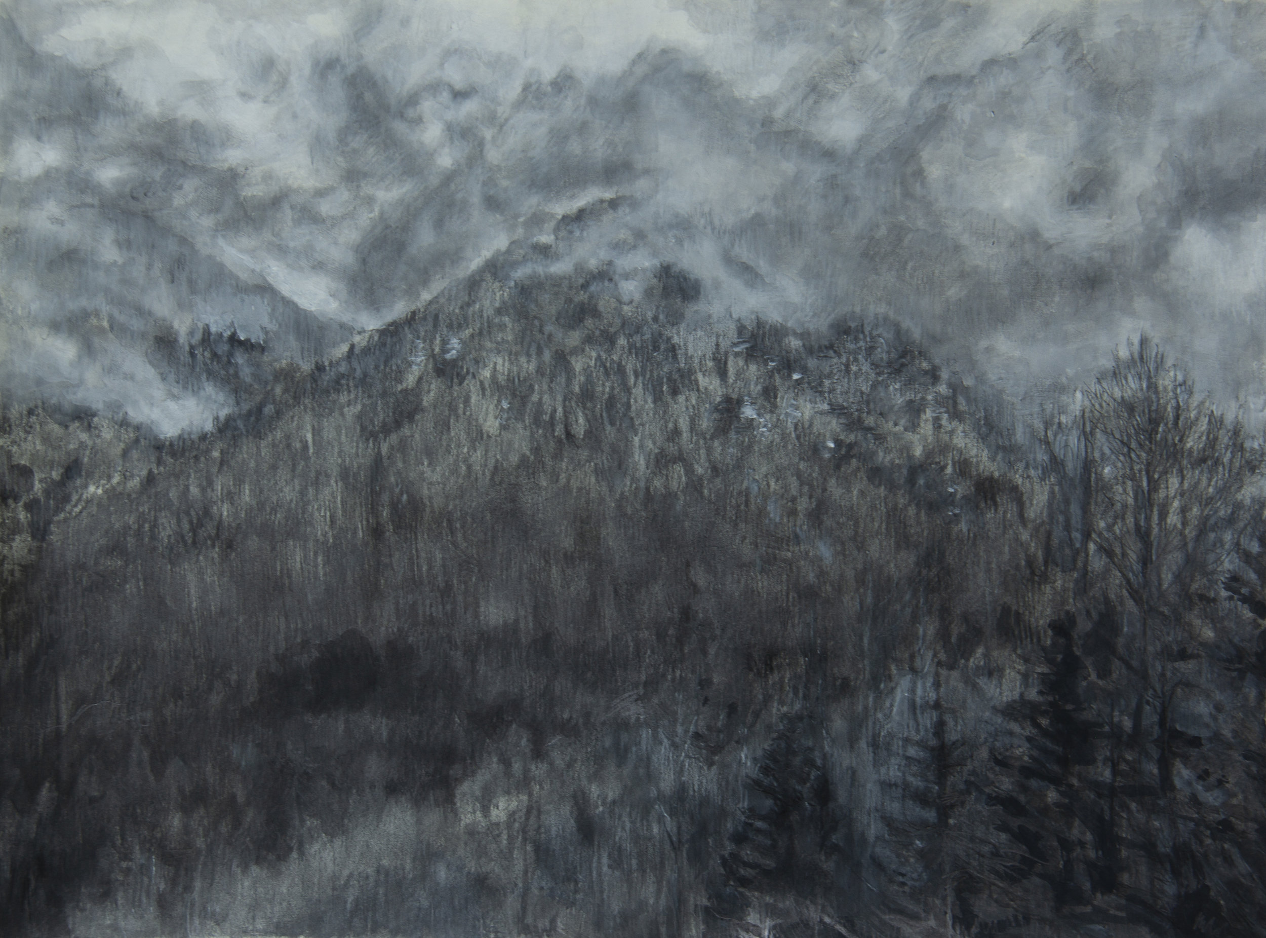 Washington Landscape III
