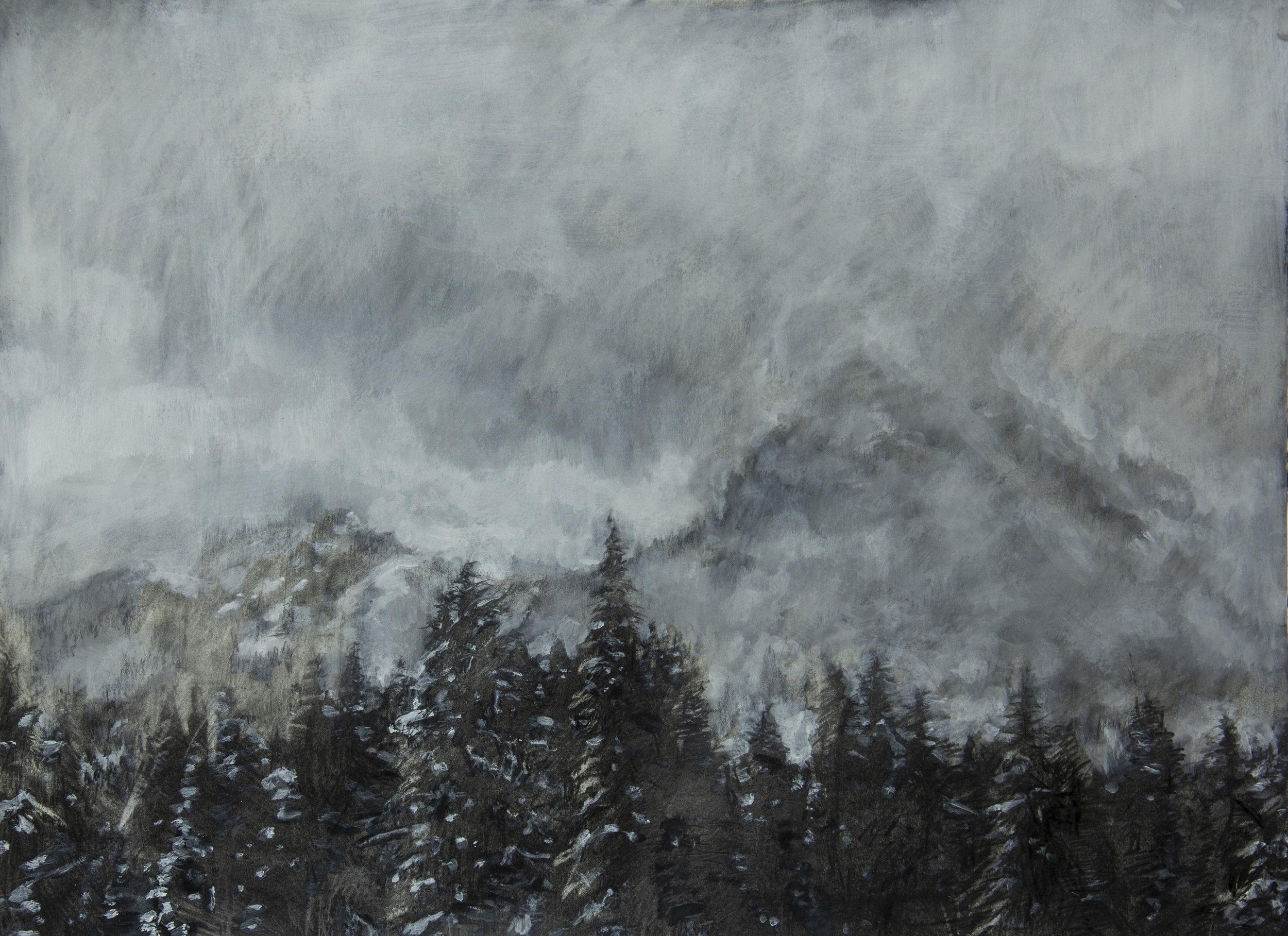 Washington Landscape II
