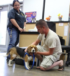 Dog microchipped in Japan reunited with owner in Arizona