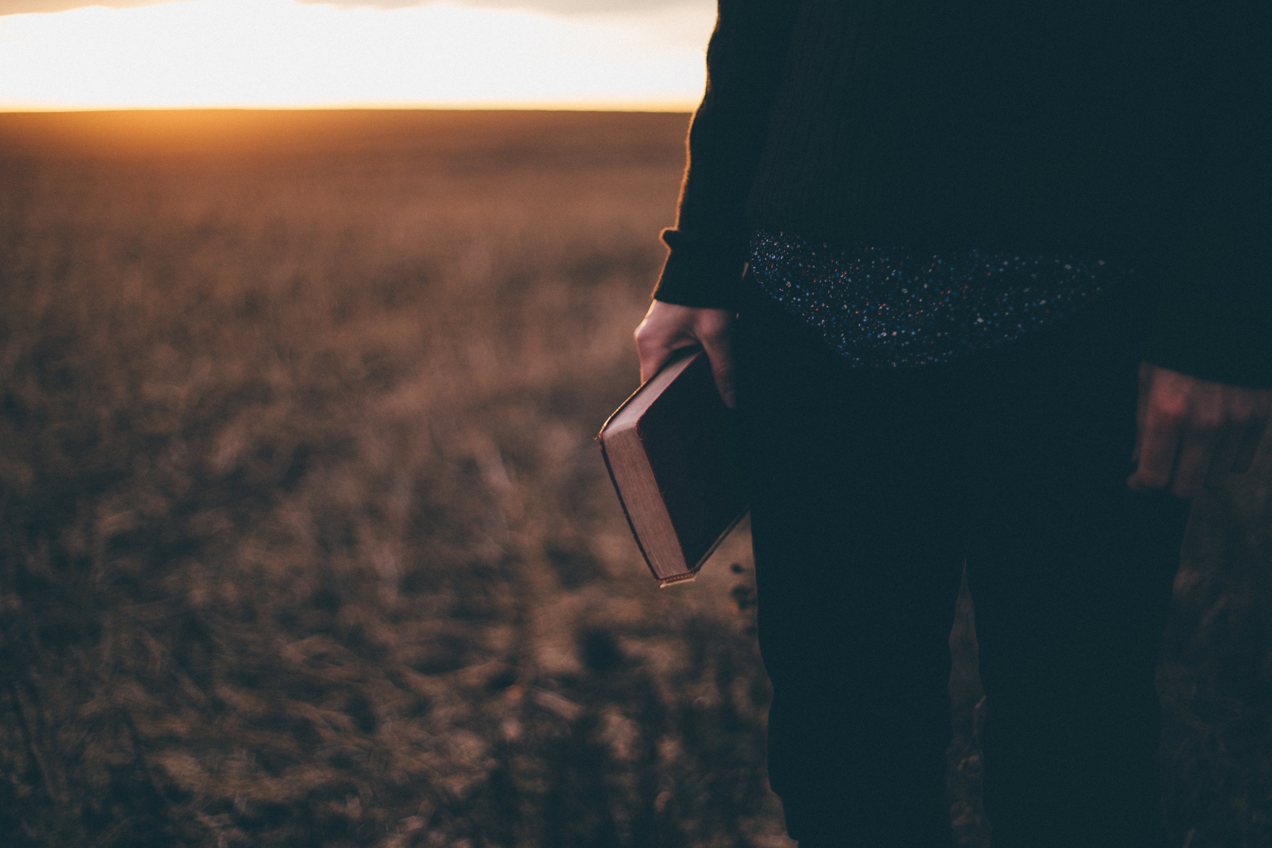 Man holding bible in wheat field