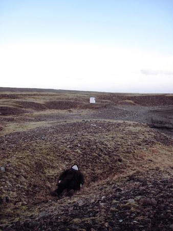 in_landscape_2010.png