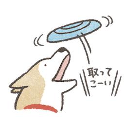 shiba_inu_19.png