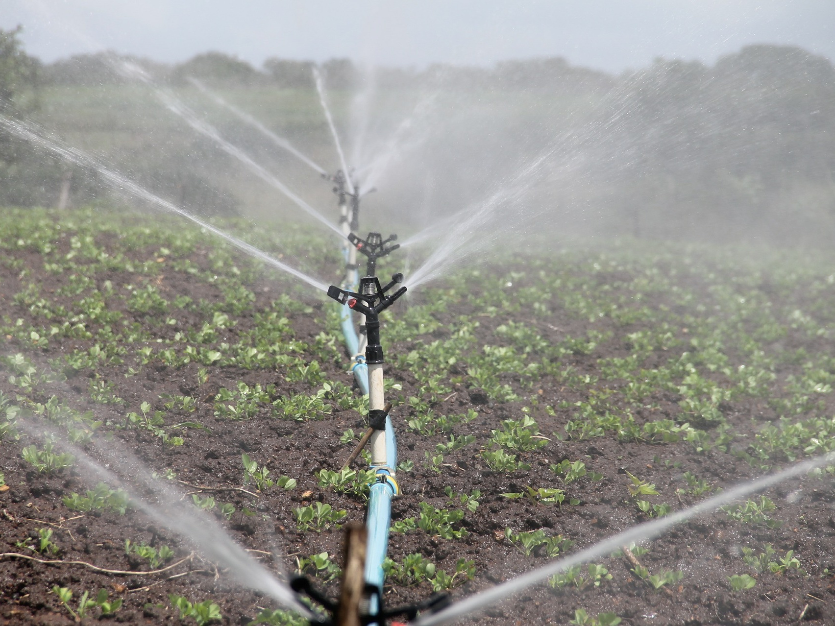 irrigation-588941_1920.jpg
