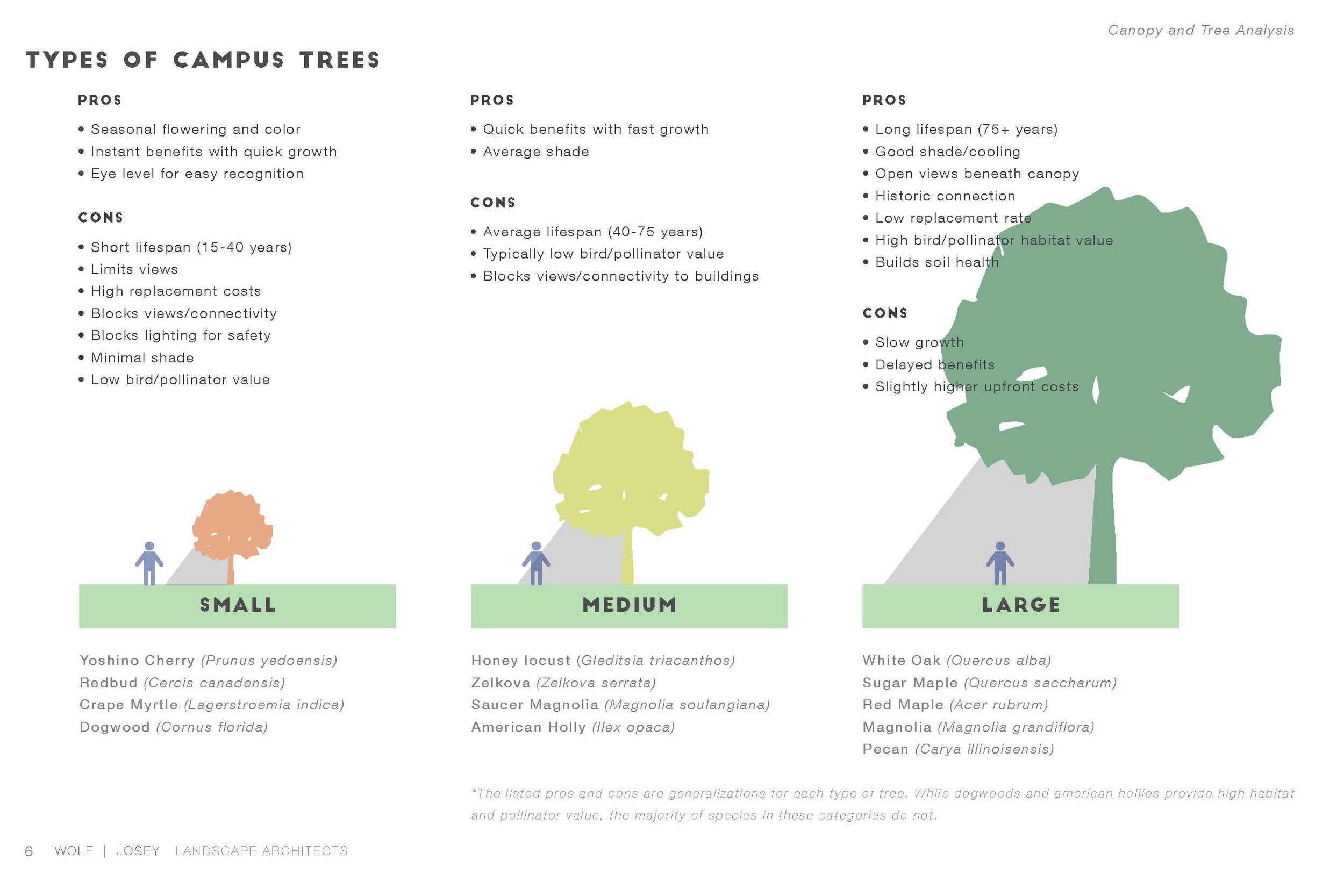 Pages from Tree Assessment and Site Analysis - Presentation_Page_03.jpg
