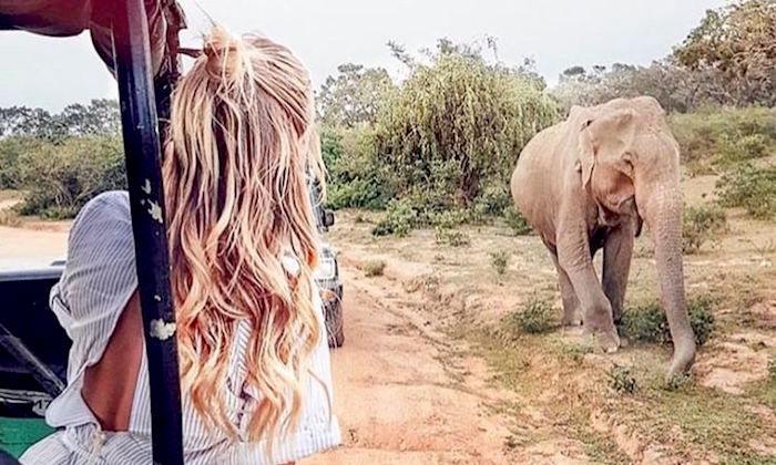 best-safaris-africa.jpg