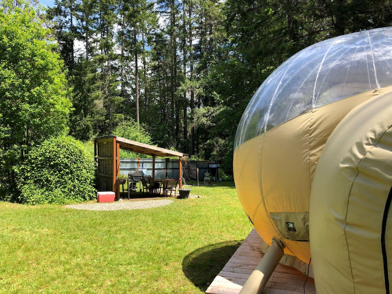 Bubble Huts LLC_Washington State_Summer Blaze 3.jpg