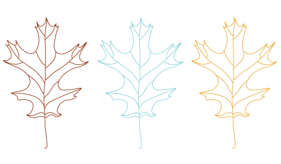 Leaf-Illustrations.png