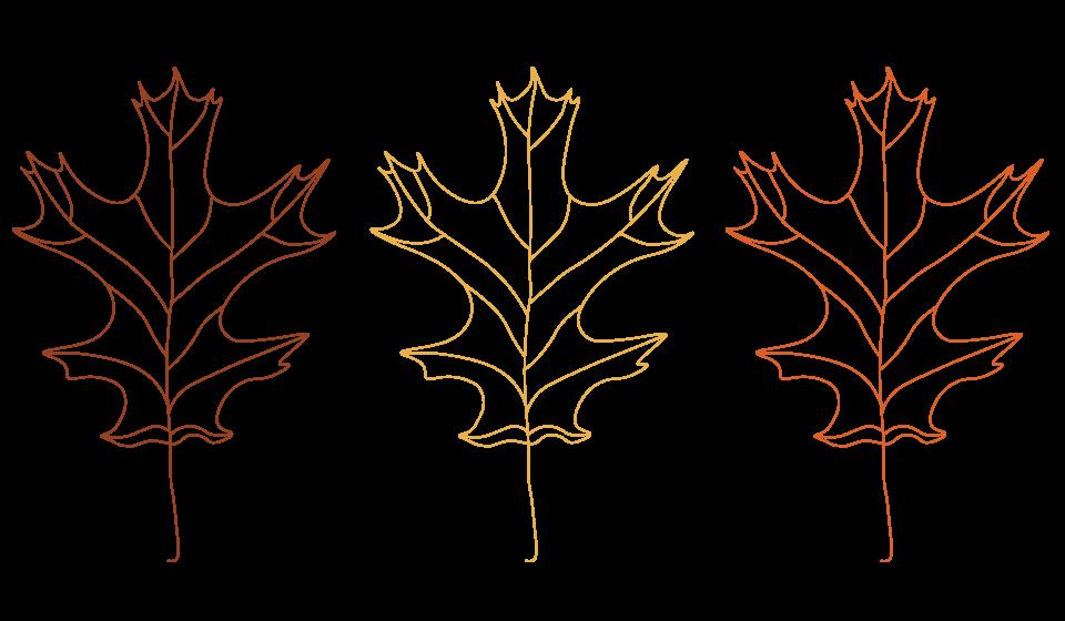 GuestServices-Leaf-Illustrations.png