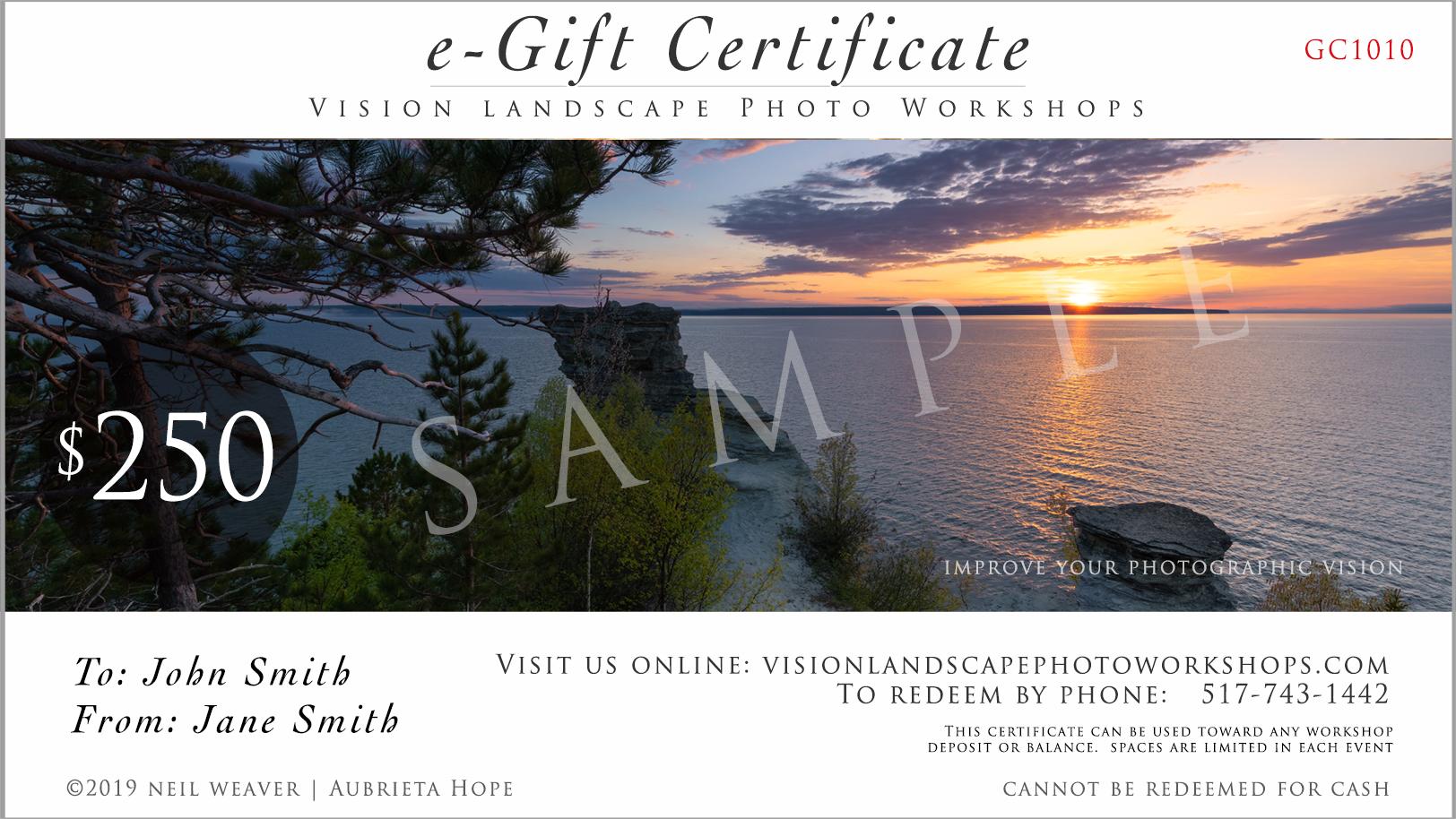 e-Gift Card VISION.jpg