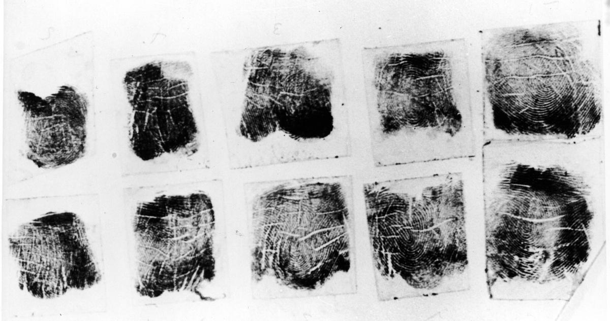 Elizabeth Shorts  Fingerprints