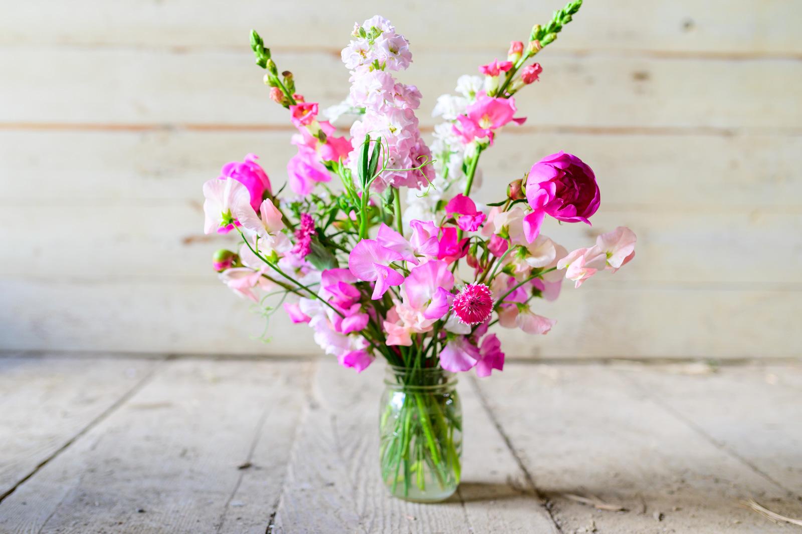 Flower Bloom_130.JPG